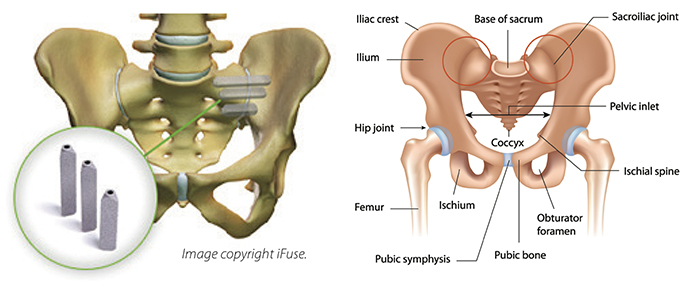 Spine Surgery, Neurosurgery, Minimally invasive spine